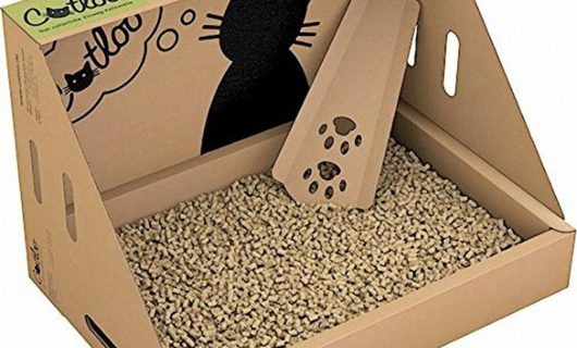 CATLOO-Bio-Einweg-Katzentoilette1