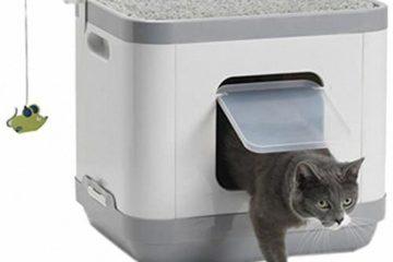 Clean'n'Tidy Katzenklo und Spielstation in einem