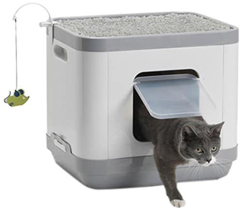 Katzenklo kaufen - Katzentoilette & Katzenstreu bestellen