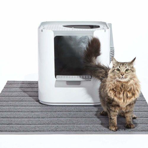 Modkat Katzentoilette