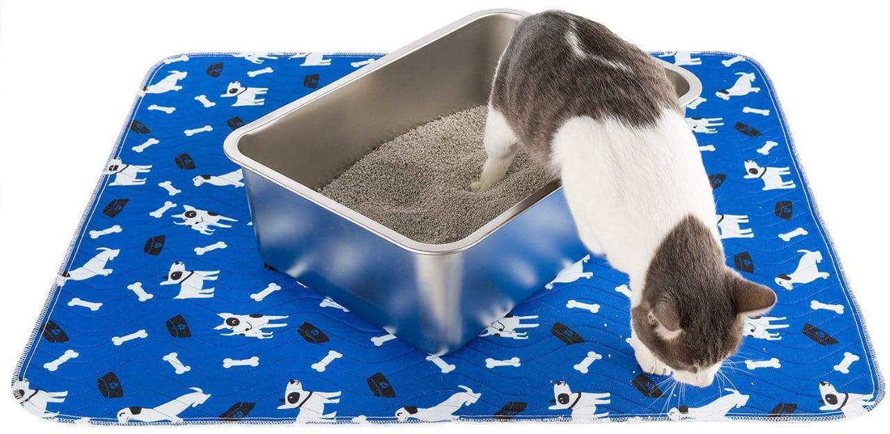 Katzentoilette aus Edelstahl