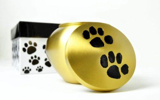 Eine besondere Urne für Ihre Katze als Andenken